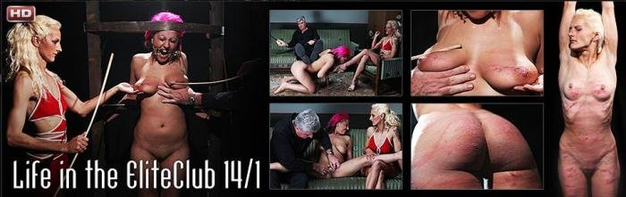 ElitePain.com - Denita - Life in the EliteClub 14, part 1 [HD 720p / Spanking / 2014]