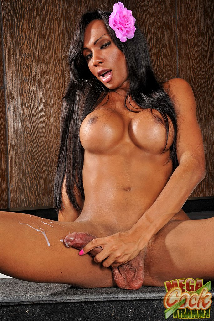 MegaCockTranny.com - Ariadny Oliver - The Beauty Ariadny Un New Solo [HD 720p / Transsexual / Masturbation / Big Dick / 2012]