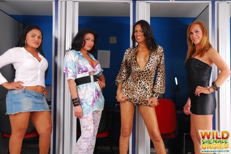 WildShemaleOrgies.com - Alexia Firenzie, Duda Carvalho, Kawanna Di Prado, Lorena Smith - Transsexual Orgy In The Internet Club [HD 720p / Transsexual / Anal / Group / 2013]