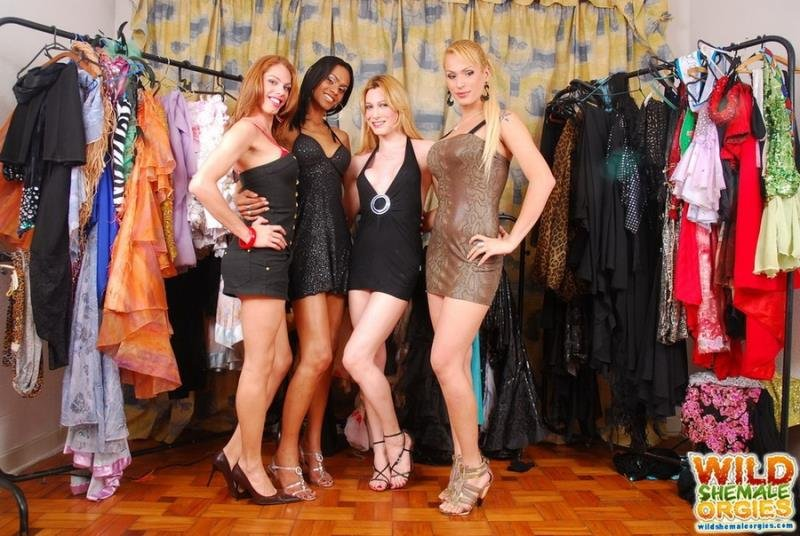 wildshemaleorgies.com - Bia Bastos, Evelin Rangel, Isabela Davilla, Kawanna Di Prado - Transsexual Escaped To Do Shopping [HD 720p / Anal / Transsexual / 2014]