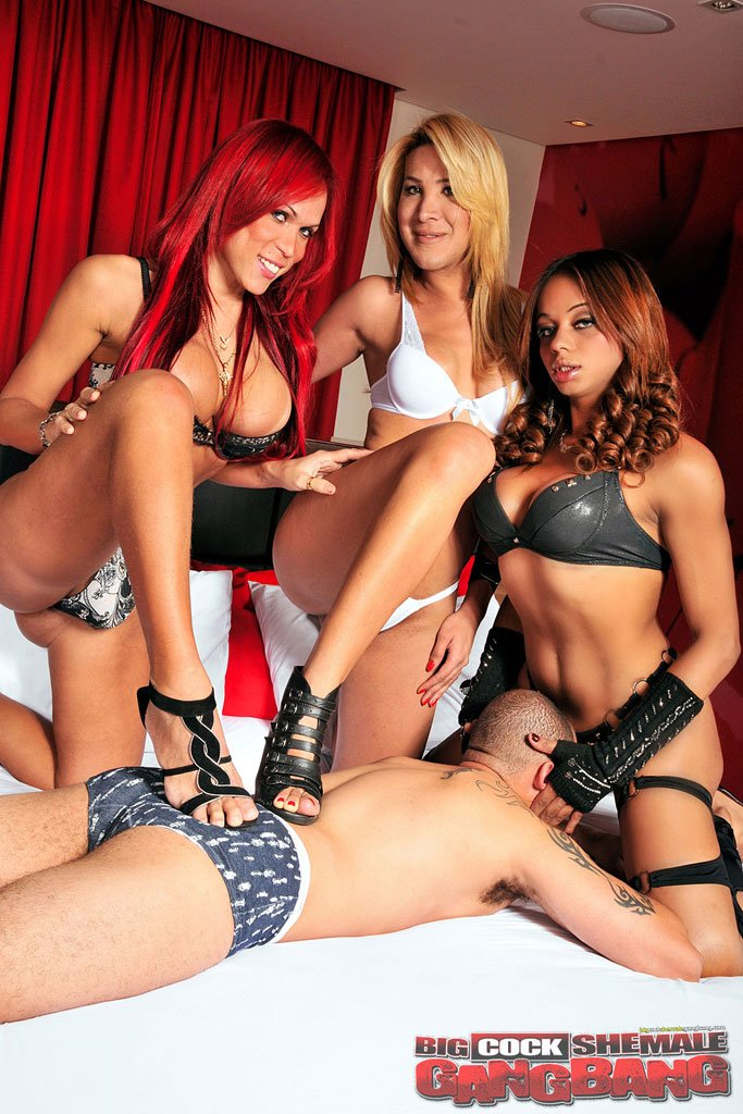 BigCockShemaleGangbang.com - Beatriz, Erika, Veronica - Party On Which Whore The Man [HD 720p / Anal / Transsexual / 2012]
