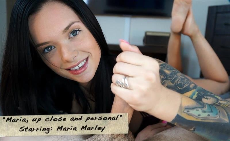 Clips4Sale.com - Maria Marley - Maria, up close & personal [FullHD / Blowjob / Stockngs / 2016]