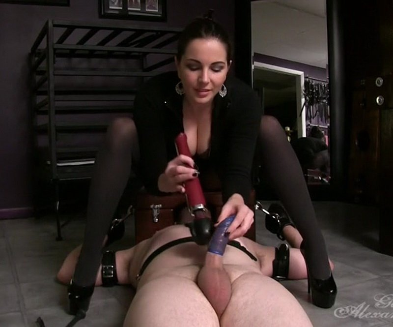 GoddessSnow.com - Alexandra Snow - Erection Destroyer [SD / Femdom / Bondage / 2015]