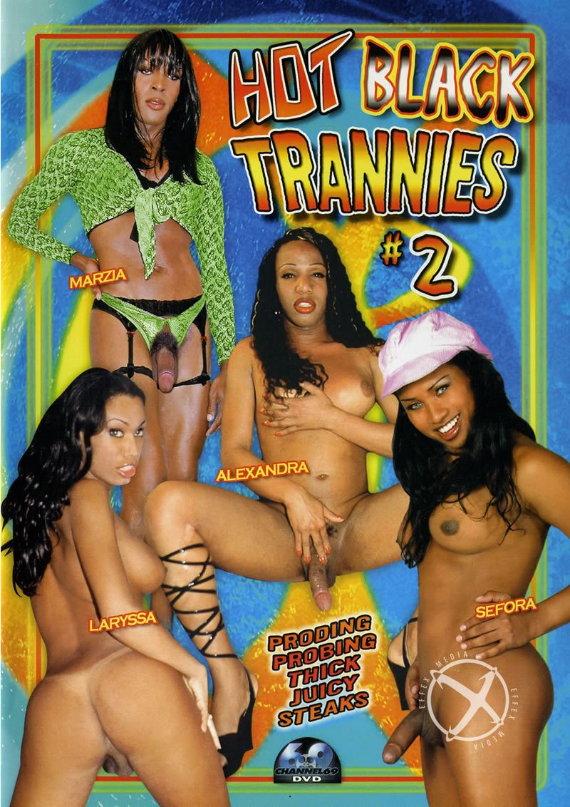 Channel 69 - Marzia, Sefora, Alexandra, Cyntia, Dunia Montenegro - Hot Black Trannies 2 [WEBRip/SD 384p / Transsexual / Anal / 2006]