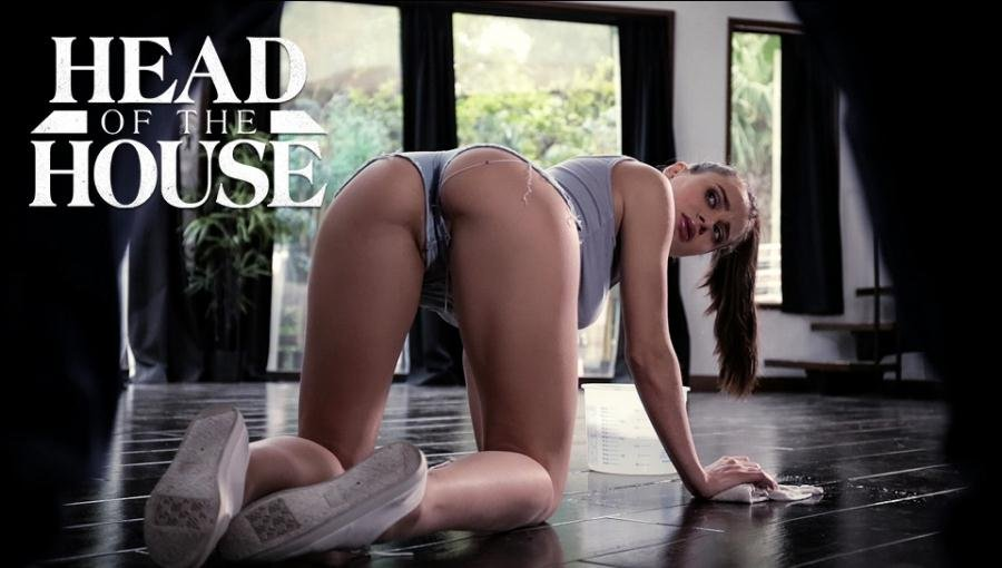 Puretaboo.com - Lana Rhoades - Head of the House [SD / Gonzo / Hardcore / 2017]