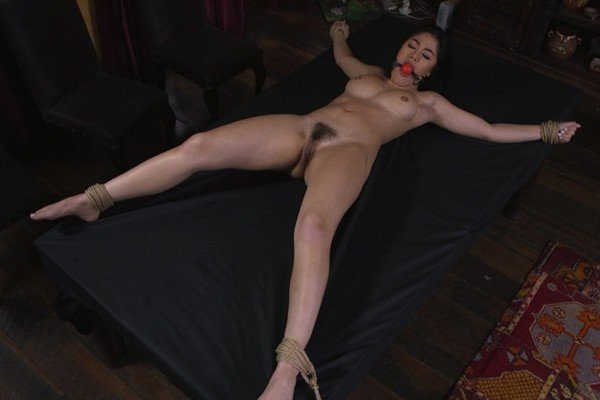 SexAndSubmission -  - The Witness [SD / BDSM, Bondage / ]